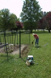 Martha digging a new garden bed