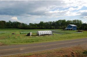 Spring Forth Farm